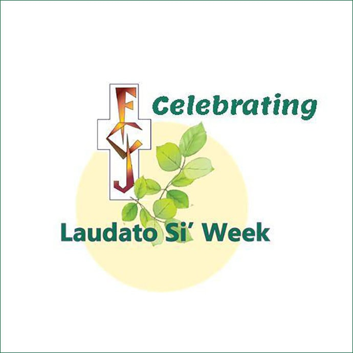 celebrating laudato si week